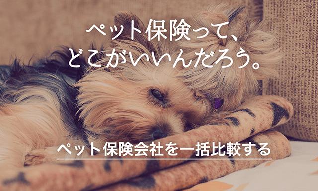 ペット保険比較 by わんちゃんホンポ
