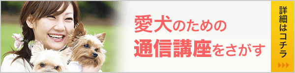 動物専門学校・資格ナビ